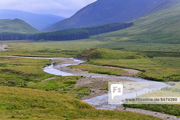 Typische Landschaft am Clunie Water  Braemar  Aberdeenshire  Grampian  Schottland  Großbritannien