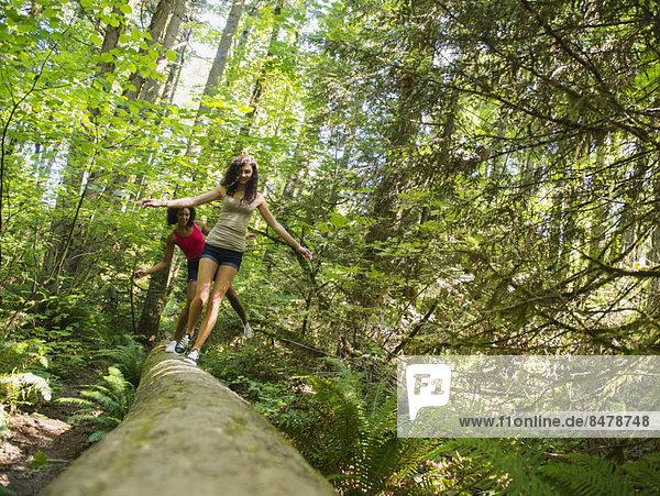 Frau  gehen  Wald  2  jung