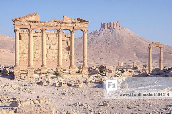 Totentempel im Morgenlicht  antike Stadt Palmyra  UNESCO-Weltkulturerbe  Palmyra  Palmyra  Palmyra-Bezirk  Gouvernement Homs  Syrien