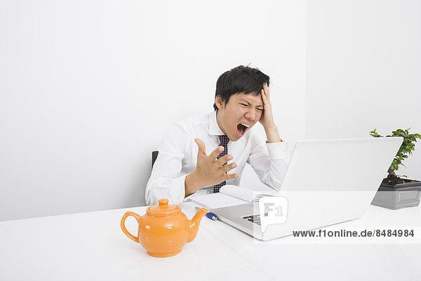 Schreibtisch  Notebook  Geschäftsmann  schreien  Büro  Mittelpunkt  Erwachsener
