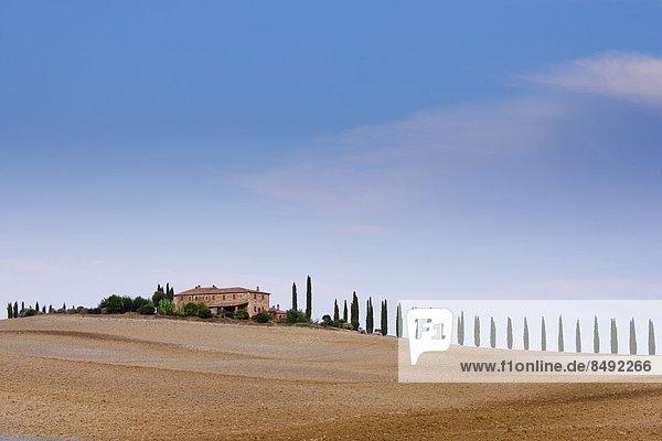 Bauernhaus  Landschaft  typisch  Toskana  Italien