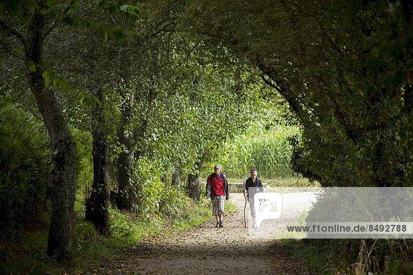 Pilgerer  Galicien  Spanien  Weg