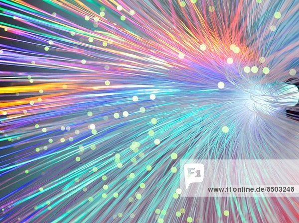 Bündel von Lichtwellenleitern zum Senden von Daten