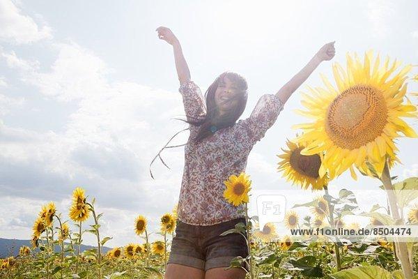 Mittlere erwachsene Frau im Feld der Sonnenblumen Mittlere erwachsene Frau im Feld der Sonnenblumen