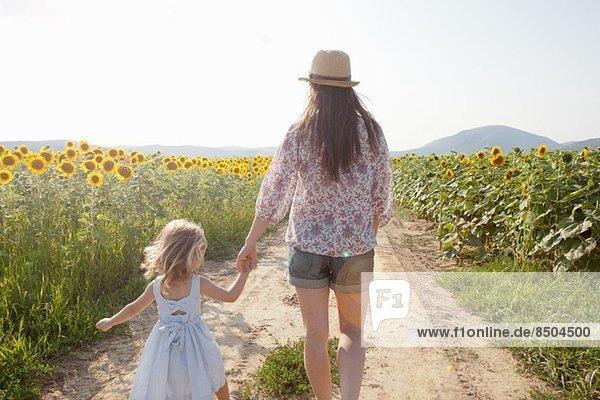 Mutter und Tochter beim Spaziergang durch das Sonnenblumenfeld Mutter und Tochter beim Spaziergang durch das Sonnenblumenfeld