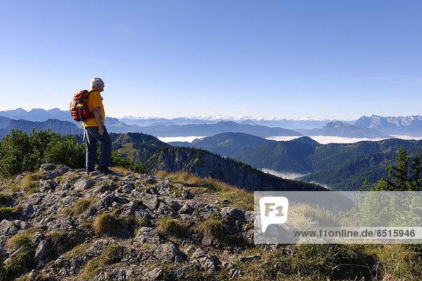 Wanderer genießt Ausblick  Hohe Tauern vom Hochfelln  Bergen  Chiemgauer Alpen  Oberbayern  Bayern  Deutschland