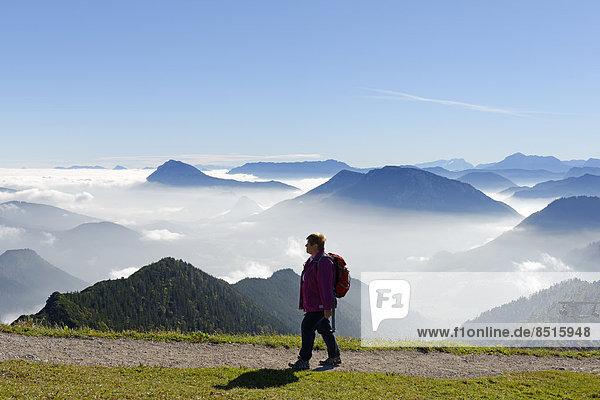 Wanderin  Hochstaufen  Untersberg  Rauschberg  Dachstein  Hoher Göll vom Hochfelln  Bergen  Chiemgauer Alpen  Oberbayern  Bayern  Deutschland