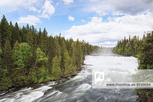 Kanada  British Columbia  Wells Gray Proßincial Park  Murtle Rißer
