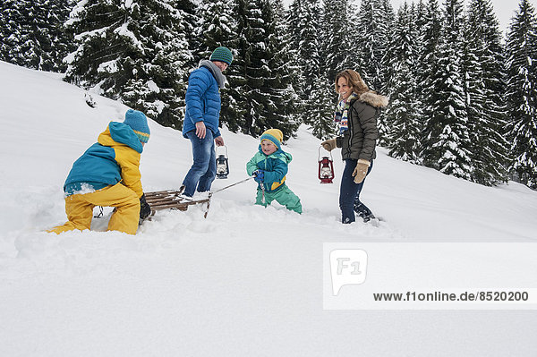 Österreich  Salzburger Land  Altenmarkt-Zauchensee  Familienwandern im Schnee  Schlittenziehen