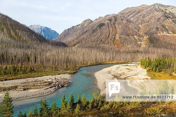 Nationalpark verbrennen Fluss Kootenay Nationalpark British Columbia Kanada