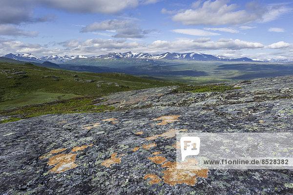 Ausblick vom Prinskullen  Fels und Flechten vorne  Kvikkjokk  Norrbottens län  Schweden