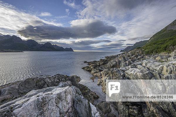 Felsstrukturen an der Küste bei Husoy  Insel Senja  Troms  Norwegen
