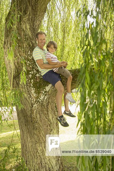 Vater und Sohn im Baum sitzend