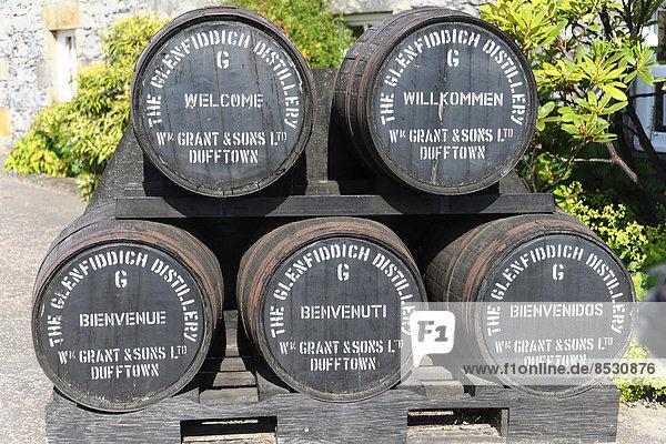 Fässer  Glenfiddich Whisky Destillerie  Dufftown  Schottland  Großbritannien