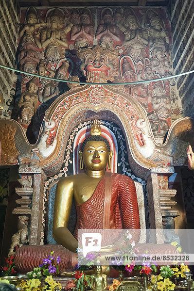 Large brightly painted golden Buddha figure  posture of meditation  Dhyana Mudra  Lankatilaka Vihara Temple  near Kandy  Central Province  Sri Lanka