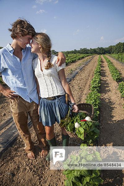 Ein junges Paar  ein Mädchen und ein Junge  gehen an einer Reihe von Gemüsepflanzen auf einem Feld entlang und halten sich an den Händen.