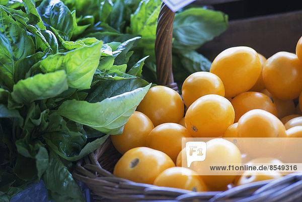 Gelbe Bio-Tomaten und Basilikum-Kräuterblätter an einem Marktstand.