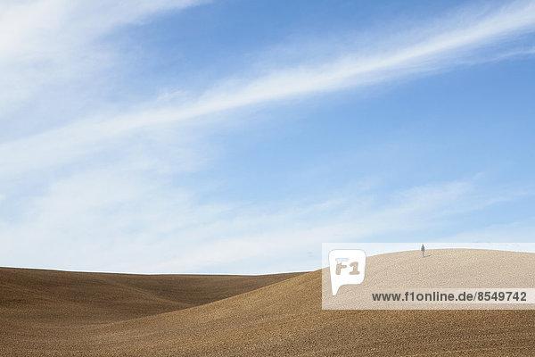 Eine Person  die auf einem Bergrücken aus gepflügter Erde steht und hinunterrollt.