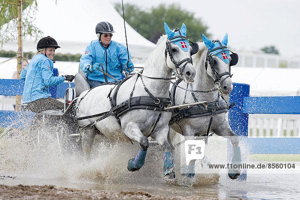 Pferdekutsche am Wassergraben  Pferdekutschenrennen  Internationales Pony-Fahrturnier  Minden  Nordrhein-Westfalen  Deutschland