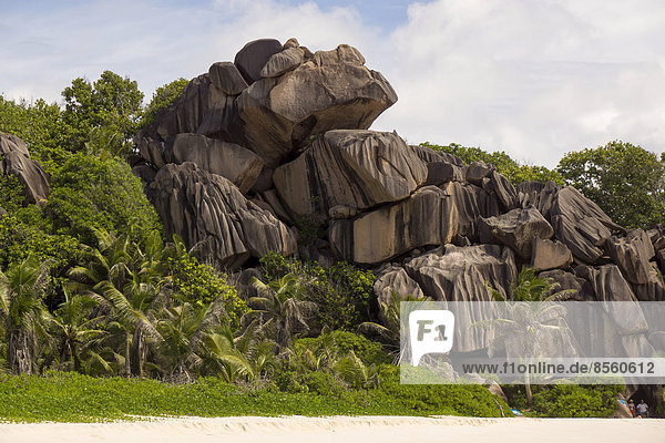 Rock formations typical for the Seychelles  at the beach  Grand Anse  La Digue  Seychelles