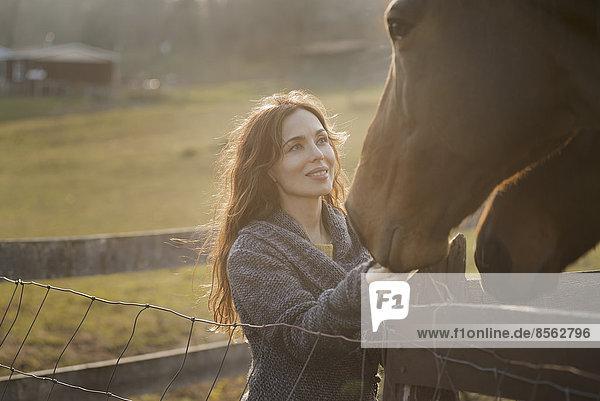 Eine Frau streichelt die Maulkörbe von zwei Pferden in einer Koppel auf einem Biohof.