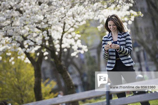 Draußen in der Stadt im Frühling. Park von New York City. Weiße Blüte an den Bäumen. Eine Frau steht und schaut auf ihr Mobiltelefon.