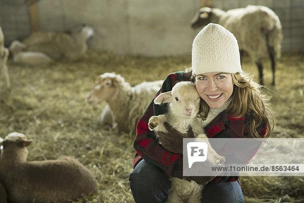 Ein Biobauernhof im Winter im kalten Frühling  Bundesstaat New York. Eine Familie arbeitet und kümmert sich um das Vieh. Eine Frau  die ein kleines Lamm hält.
