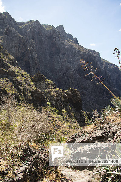 Masca-Schlucht  Teneriffa  Kanarische Inseln  Spanien
