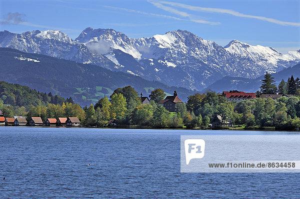 Die verschneiten Oberstdorfer Berge  vorne Bühl am Alpsee mit Alpsee  Oberallgäu  Bayern  Deutschland