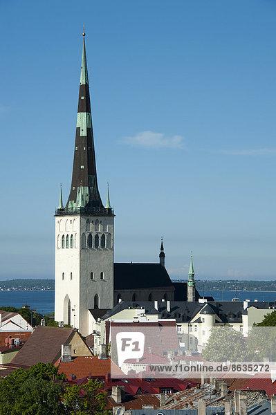 Ausblick vom Domberg  Olaikirche  Tallinn  Estland  Baltikum