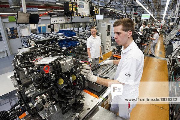 A3 A 3 Fließband Fertigungsstraße Mann arbeiten Pflanze Audi Bayern Deutschland Ingolstadt