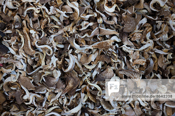 Haufen von Pilzen auf dem Markt  Yuanyang  China
