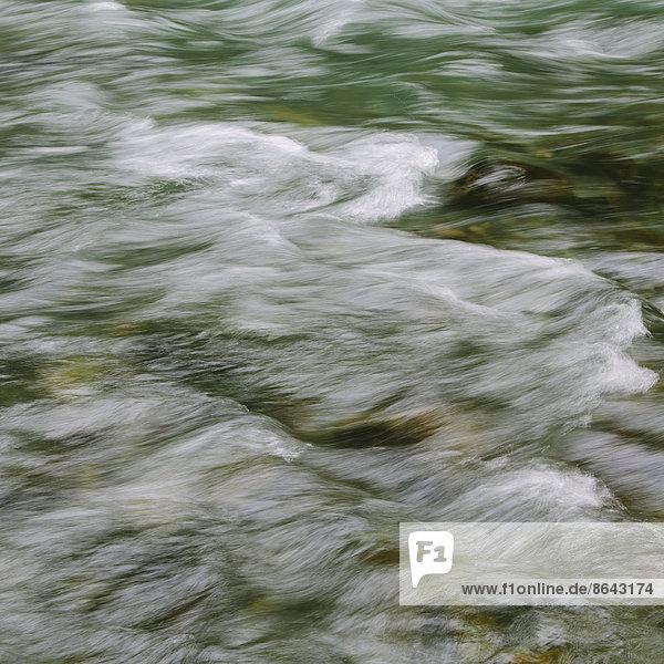 Detail von fließendem Flusswasser  Dosewallips River  Olympic NP  WA