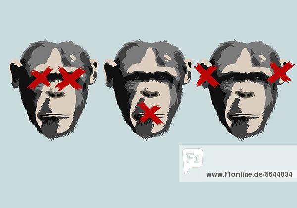 Illustration von drei Affen  die das Sprichwort darstellen  sehen kein Übel  hören kein Übel  sprechen kein Übel