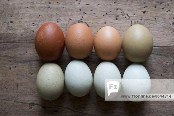 Eier in Reihen  Nahaufnahme