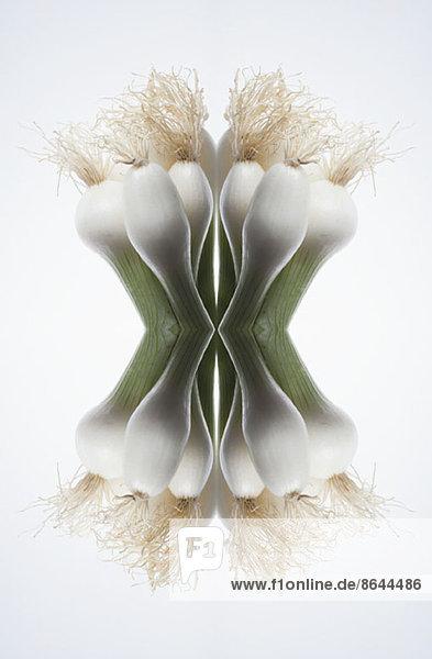 Eine digitale Komposition von Spiegelbildern der Spitzen eines Straußes von Frühlingszwiebeln.