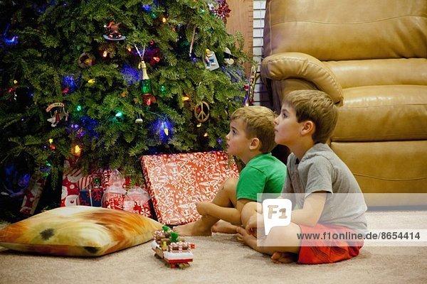 Zwei versunkene junge Brüder sitzen neben dem Weihnachtsbaum.