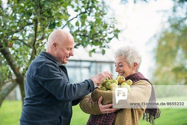 Porträt eines glücklichen Seniorenpaares mit Äpfeln