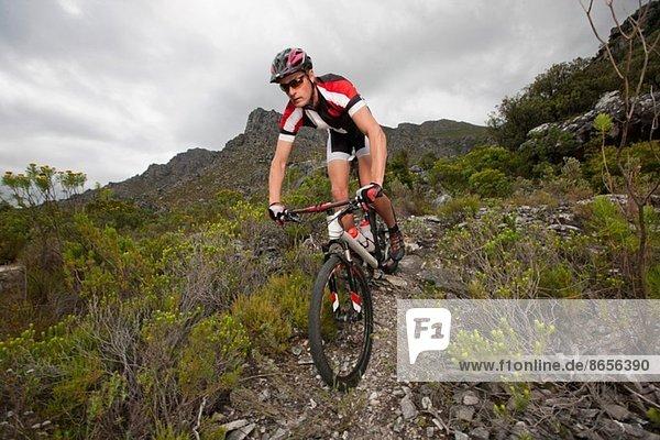 Junger Mann mit dem Mountainbike auf dem Bergweg