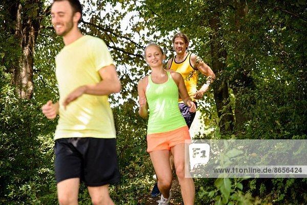 Kleine Gruppe von Läufern beim Training im Wald