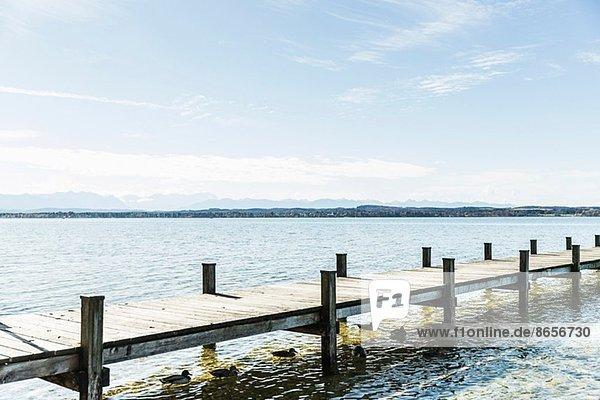 Steg  Starnberger See  Bayern  Deutschland
