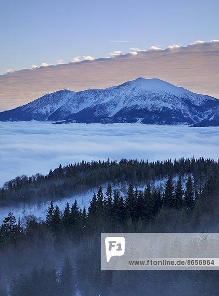 Schneeberg und die Schneealm  Sonnenuntergang  Thal Pernitz  Niederösterreich  Österreich
