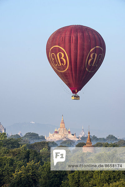 Hot air balloon over the landscape in morning light  Ananda Temple  temple complex with a gold-plated tower structure or Shikhara  stupas  pagodas  temple complex  Plateau of Bagan  Mandalay Division  Burma or Myanmar