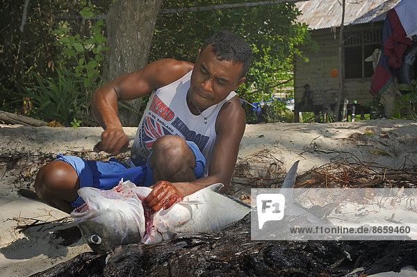 Fischer nimmt einen großen Fisch aus  Insel Runi  Biak  West-Papua  Indonesien