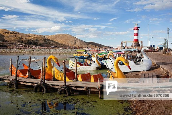 Pedal boats for rent at the harbour  Puno Region  Lake Titicaca  Peru  South America.