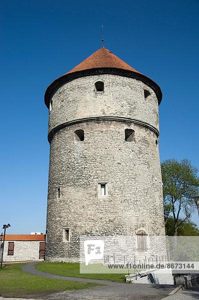 Tallinn  Hauptstadt  Stadtmauer  Altstadt  Estland