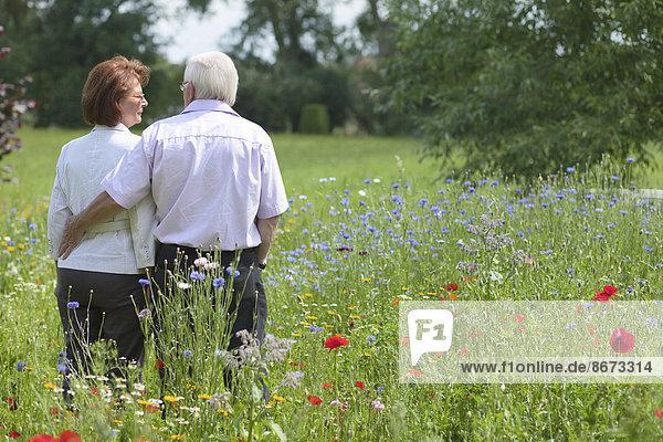 Seniorenpaar steht auf einer Blumenwiese  Niedersachsen  Deutschland