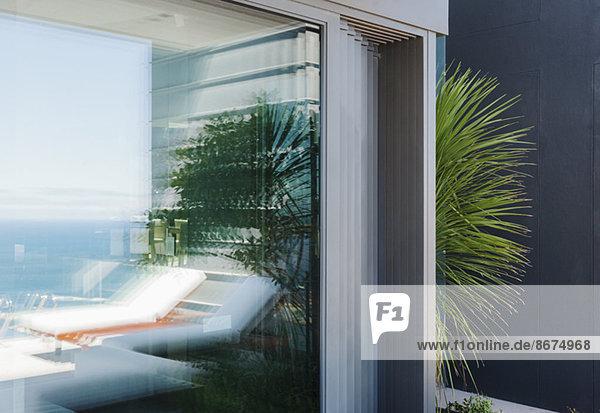 Palme blickt um die Ecke des modernen Hauses