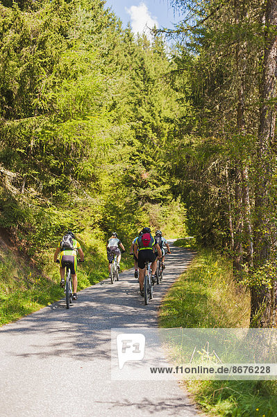 Italy  Dolomite Alps  five bicyclists cycling on a single track
