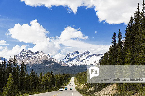 Canada  Alberta  Jasper National Park  Banff National Park  Icefields Parkway